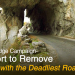 "Online Pledge Campaign- An Effort to Remove ""Country with the Deadliest Roads"" Tag"