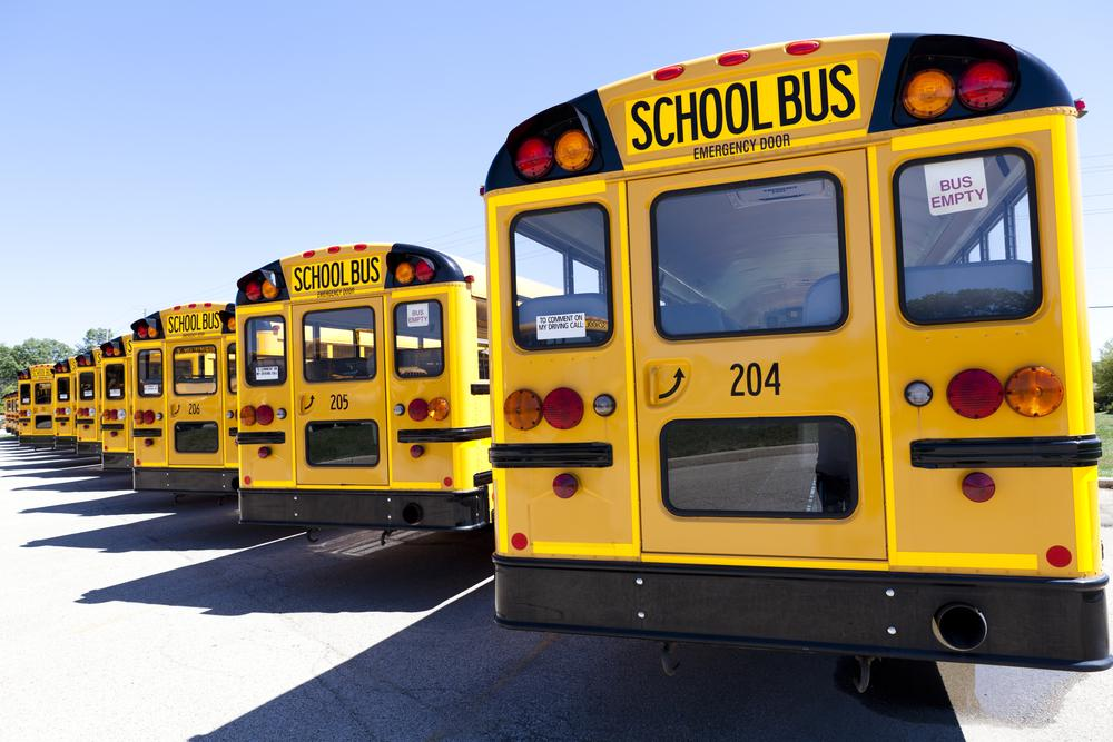 Why Are School Buses Yellow In Color